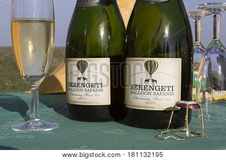 Serengeti National Park Tanzania - March 11 2017 : Champagne bottle and glasses from air balloon safari toast on Serengeti Tanzania Africa.