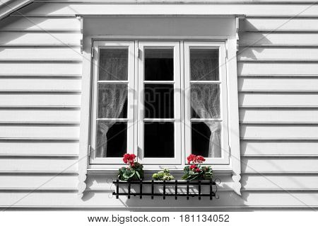 White window and flowers at wooden house