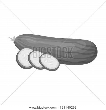Cucumber sliced into pieces.Burgers and ingredients single icon in monochrome style vector symbol stock web illustration.