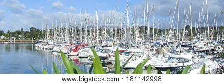 Panoramic View Of The Marina With All The Mas Of Sailboats In The Air