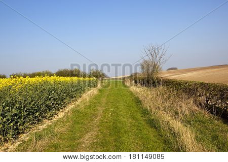 Bridleway And Agriculture