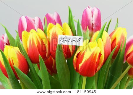 Get well card with colorful tulips, closeup