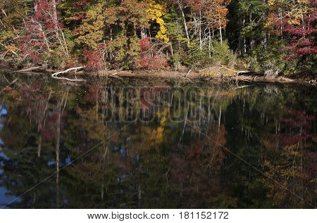 Fall colors reflected in the mirror-like waters along the shore of Lake Santeetlah in western North Carolina