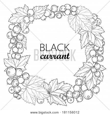 Vector round wreath with outline Black currant. Bunch, berry and leaves isolated on white background. Ornate floral elements with blackcurrant in contour style for summer design and coloring book.