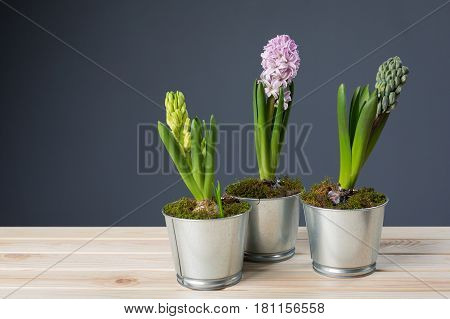 Flowers are in metal pails on the boards
