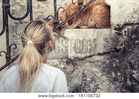 Woman caress watchful domestic cat on stairs in old European town