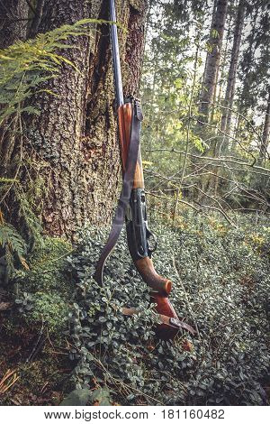 Hunting gun at tree trunk in forest during hunting season in vintage colors