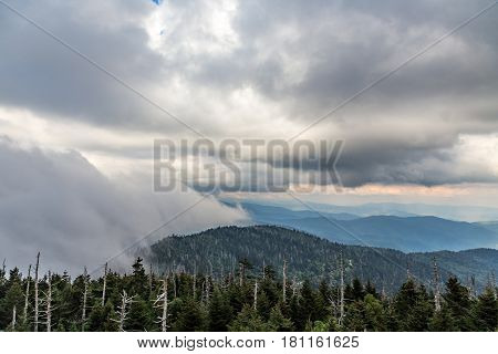 Heavy evening fog rolls across the Appalachian Mountains at Clingman's Dome.