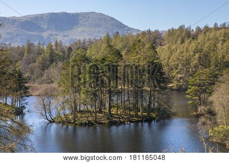 The picturesque scenery of Tarn Hows in the Lake District in Cumbria UK.
