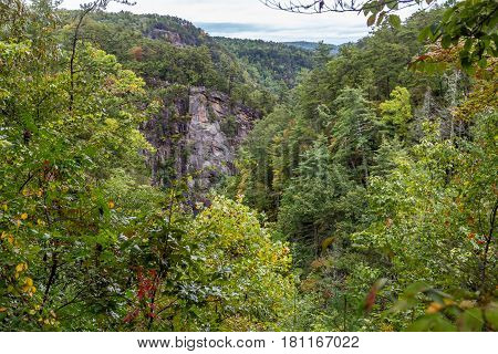 One of the most spectacular canyons in the eastern U.S. Tallulah Gorge is two miles long and nearly 1000 feet deep.