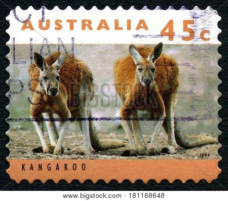 AUSTRALIA - CIRCA 1994: A used postage stamp from Australia depicting an image of two Kangaroos circa 1994.
