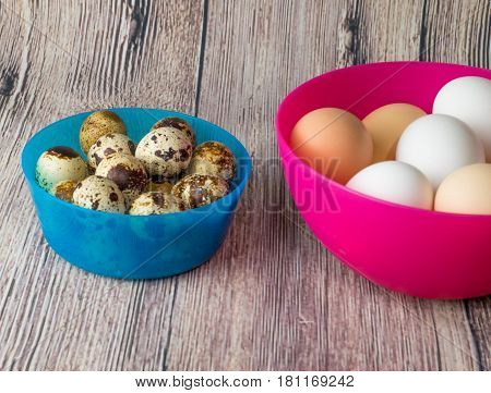quail eggs and chicken for the feast of Easter for coloring are in plastic bowls with pink and blue on a wooden table