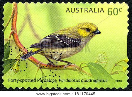 AUSTRALIA - CIRCA 2013: A used postage stamp from Australia depicting an illustration of a Forty-Spotted Pardalote bird circa 2013.