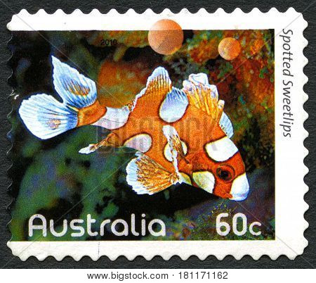 AUSTRALIA - CIRCA 2010: A used postage stamp from Australia depicting an image of a Spotted Sweetlips fish circa 2010.