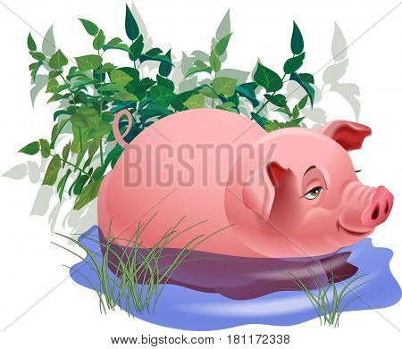 Piglet in a puddle of water against a background of bushes and grass. Vector image.