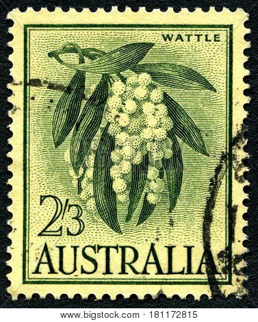 AUSTRALIA - CIRCA 1959: A used postage stamp from Australia depicting an illustration of Wattle shrub plant circa 1959.
