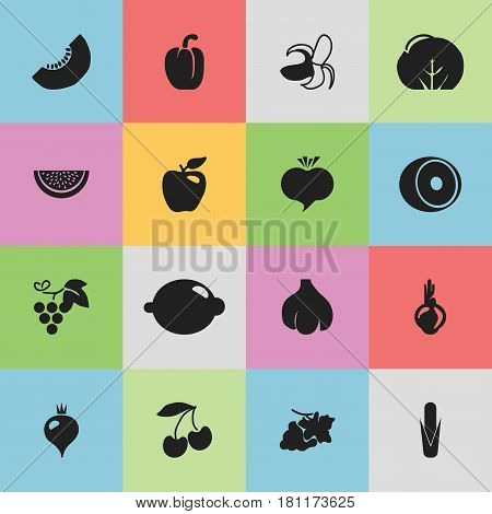 Set Of 16 Editable Berry Icons. Includes Symbols Such As Honeycrisp, Sativum, Cauliflower And More. Can Be Used For Web, Mobile, UI And Infographic Design.