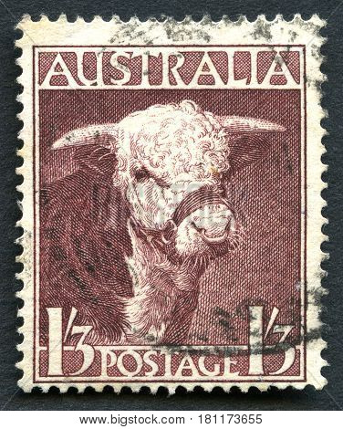 AUSTRALIA - CIRCA 1948: A used postage stamp from Australia depicting an illustration of a Hereford Bull circa 1948.