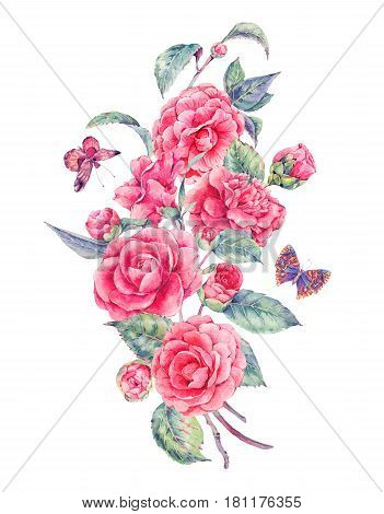 Vintage garden watercolor natural bouquet with pink flowers camellia and butterflies, isolated botanical illustration on white background.
