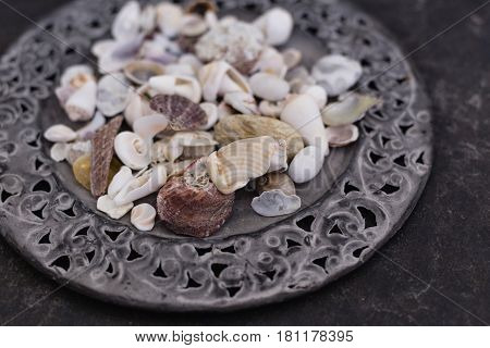 Close up of seashells of various colors and shapes placed on flat metal plate with carved frame