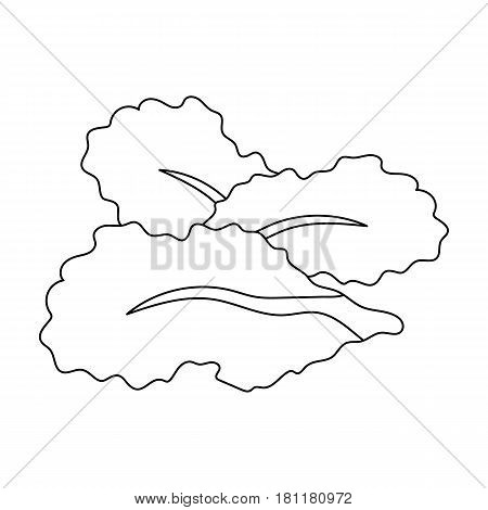 Salad leaves.Burgers and ingredients single icon in outline style vector symbol stock web illustration.