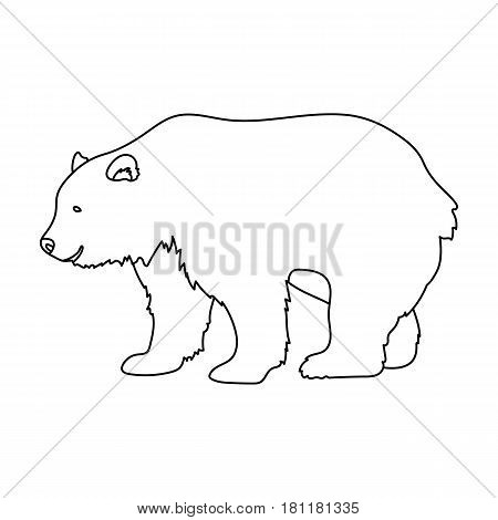 Canadian brown bear. Canada single icon in outline style vector symbol stock illustration .