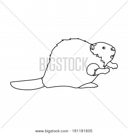 Canadian beaver. Canada single icon in outline style vector symbol stock illustration .