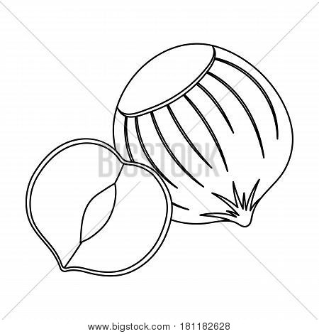 Hazelnuts in shell.Different kinds of nuts single icon in outline style vector symbol stock web illustration.