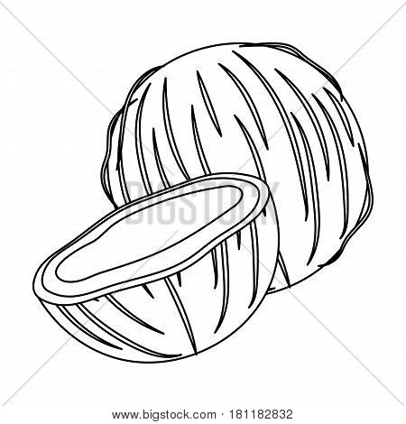 Coconat.Different kinds of nuts single icon in outline style vector symbol stock web illustration.
