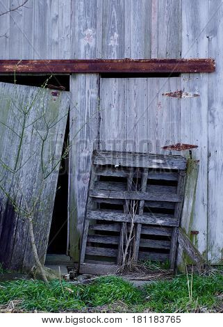 Old pallet with weeds growing through it leaned against old barn with rusty hardware with green grass in foreground