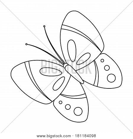 Spring butterfly. Easter single icon in outline style vector symbol stock web illustration.