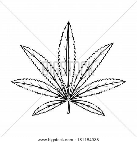 Green leaf of hemp.Hippy single icon in outline style vector symbol stock illustration .