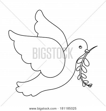 Pigeon of the World with a twig in its beak.Hippy single icon in outline style vector symbol stock illustration .