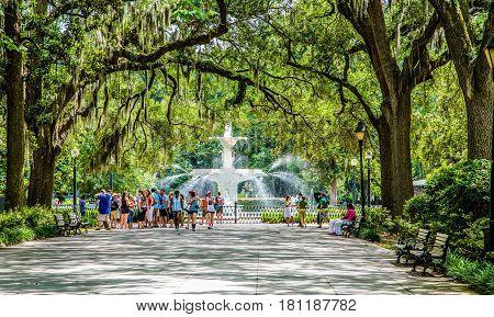 SAVANNAH GEORGIA - June 7 2014: The iconic fountain and massive oak trees has been a landmark in Savannah since the 1840s