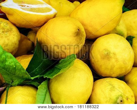 Group of large yellow fresh and healthy lemons