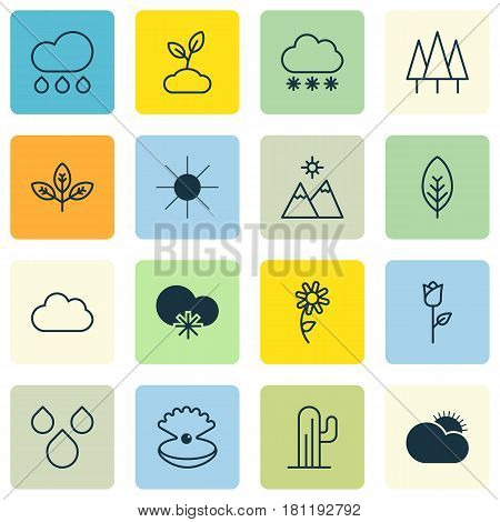 Set Of 16 Landscape Icons. Includes Seashell, Sprout, Forest And Other Symbols. Beautiful Design Elements.