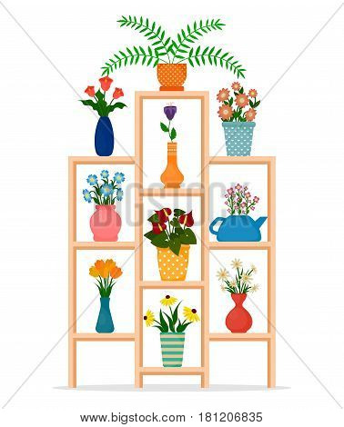 Houseplants or indoor plants and potted flowers on shelves of the stand. EPS10 vector illustration in flat style.