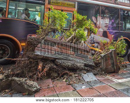 Fallen Building Wall