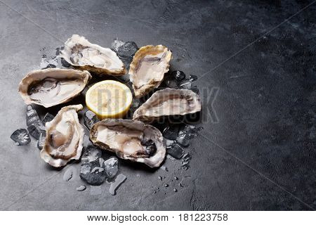 Opened oysters and lemon on stone table. With copy space