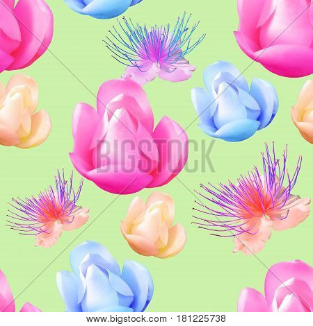 Magnolia. Texture of flowers. Seamless pattern for continuous replication. Floral background photo collage