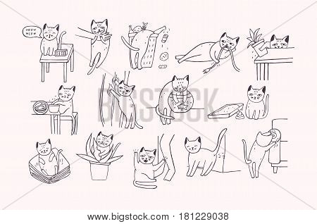 Set of problem with cat behavior. Kitten meowing, bites, scratches, marks sofa, sleeps on clothes, goes to the toilet, digs in the garbage, fishing. Cute hand drawn doodle illustration