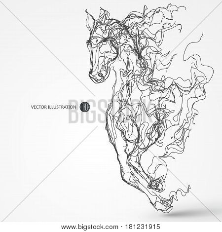 Running horse lines drawing, Sketch, vector illustration.