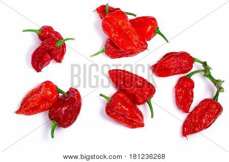 Bhut Jolokia Ghost Peppers, Paths, Top View