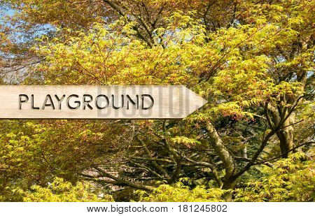 Playground written on directional wooden sign in front of majestic tree with yellow green leaves.