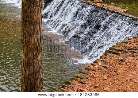 Spillway waterfall and the tree in the Lullwater Park Atlanta USA