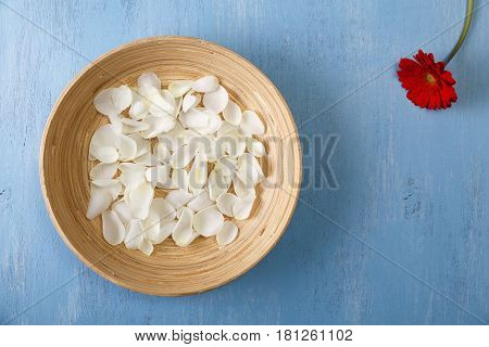 Petals of white roses and red gerbera flower. Blue painted rustic background. Fresh natural flowers in bowl. Dirty grunge wooden board.