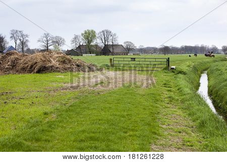 Rural landscape with pasture and farm with a public footpath on the right side of the fence in Nunspeet in the Netherlands