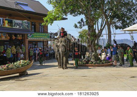 Dak Lak , Vietnam , March 12,2017 : Man riding Elephant in  in Jun village i in Dak Lak, Vietnam