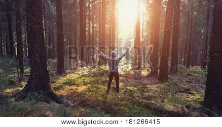 Young man stand in forrest and enjoys nature and sunlight