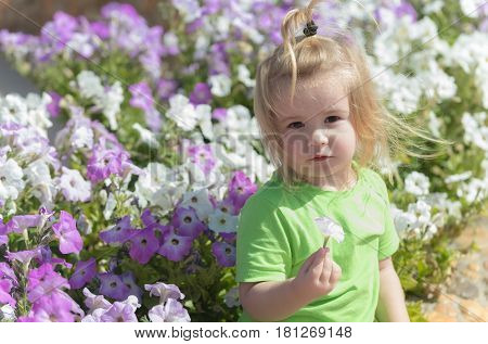 Cute baby boy small child with blond hair in green tshirt playing at flowerbed with white violet blossoming flowers in spring summer park sunny outdoors on natural background. Childhood happiness